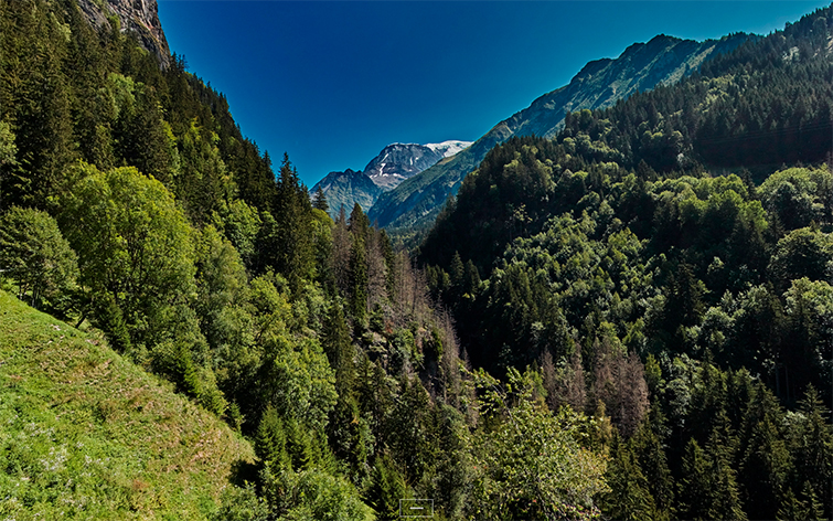 Visite virtuelle de haute définition de paysage pour la promotion des offices de tourisme